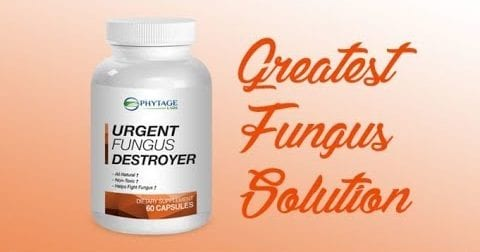 Urgent Fungus Destroyer  Review – Shocking Truth Revealed Here!